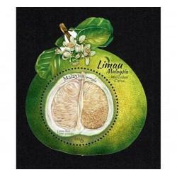 2018 Malesia frutto Limau Citrus Unusual