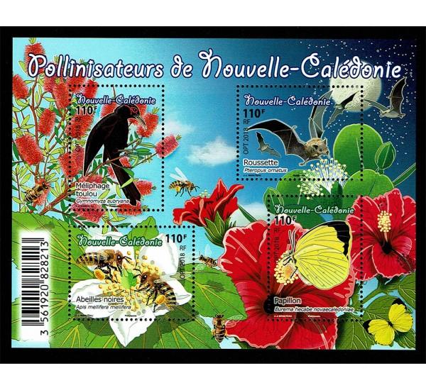 2019 Nuova Caledonia insetti impollinatori
