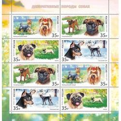 2019 Russia Cani di compagnia
