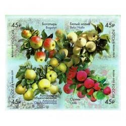 2019 Russia Flora russa - Alberi di melo