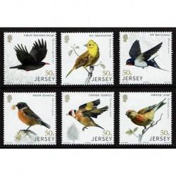 2018 Jersey uccelli Collegamenti con la Cina