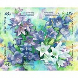 2019 Russia Flora Russa. Campanula