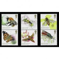 2020 Gran Bretagna insetti impollinatori Richard Lewington