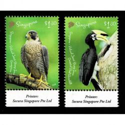 2019 Singapore congiunta (joint iusse) Polonia uccelli