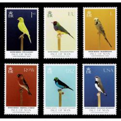 2021 Isle of Man mostra di uccelli