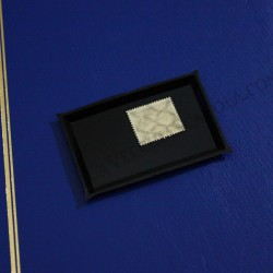 Vaschetta Filigranoscopio 75 x 50 mm
