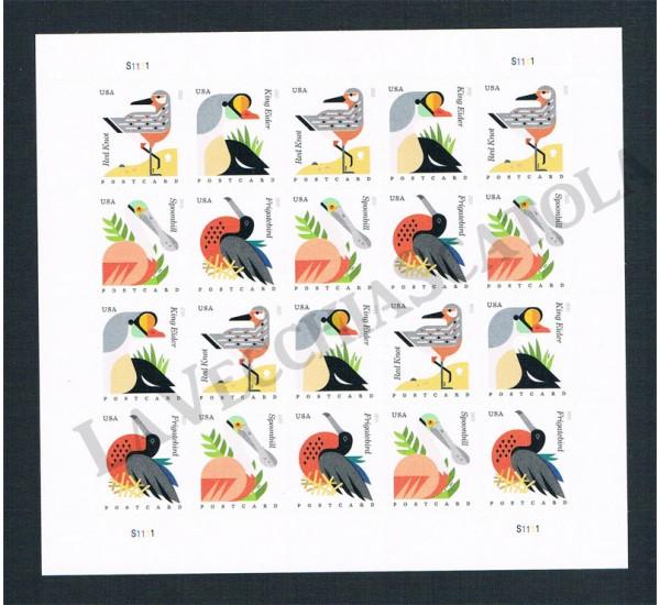 2015 USA minifoglio Uccelli Costieri
