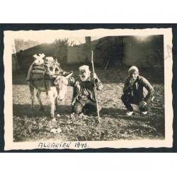 1943 WWII Foto d'epoca armata tedesca in Albania