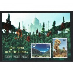 2017 India Turismo Beautiful India foglietto